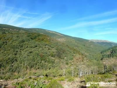 Pico Santuy; El Cerrón; el bosque de irati;urbasa;fotos sierra de madrid